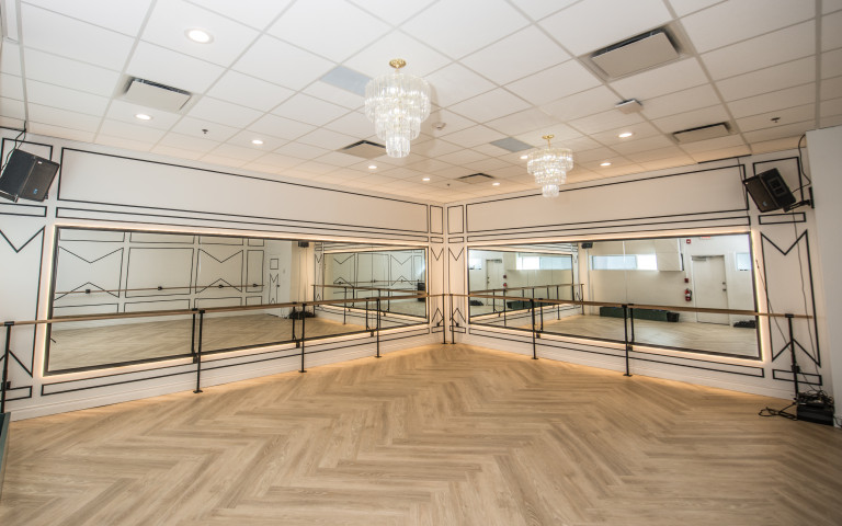 Barre Belle fitness studio in Calgary features a stunning wall treatment using Metrie panel mould designed by Aly Velji Designs. Image source: Western Living Magazine