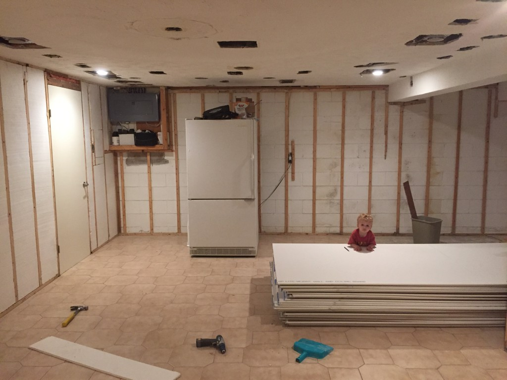 Sarah Walker is planning on transforming her basement for the One Room Challenge. Image Source: The Curated House.