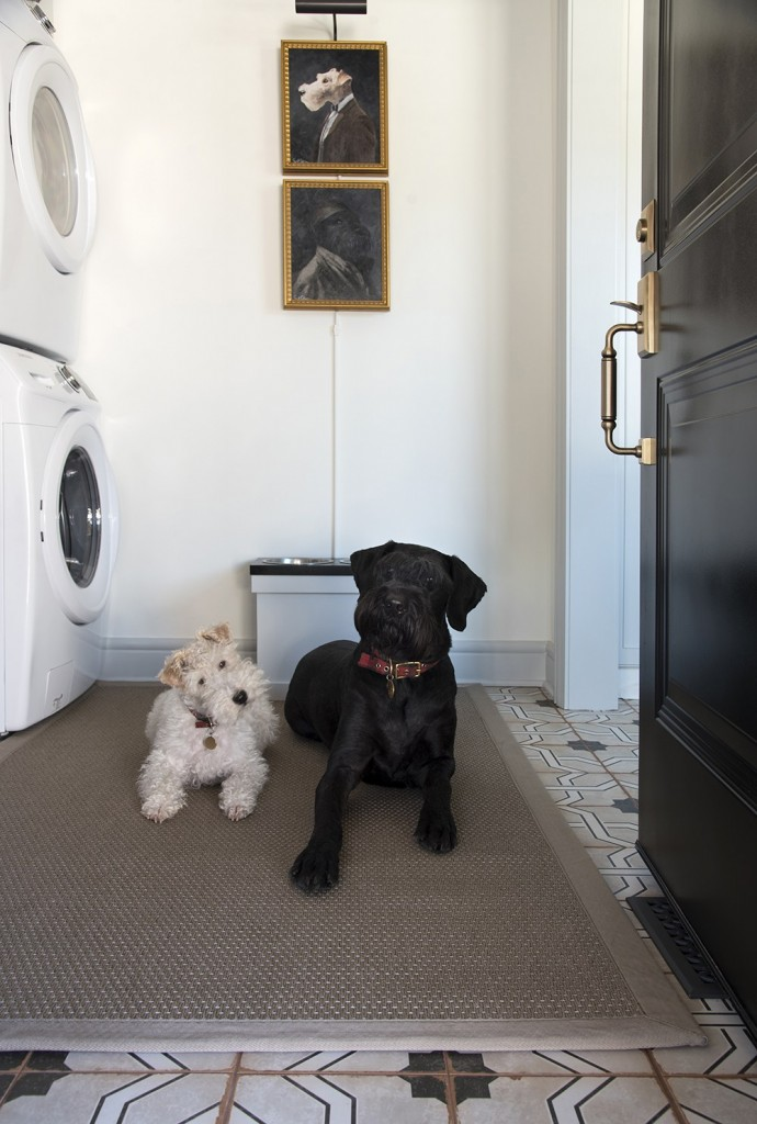 Sarah Gibson's dogs are enjoying their new space