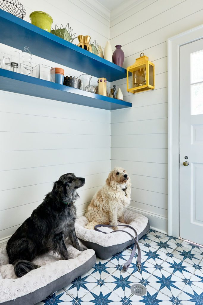 Holly's dogs are loving this room makeover